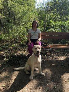Jonge vrouw met Hond op bankje in het bos
